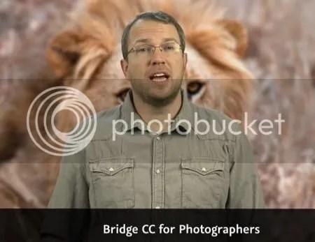 Lynda - Bridge CC for Photographers with Tim Grey