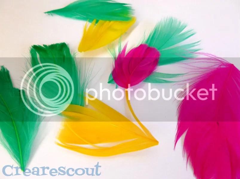 piume colorate per indiani