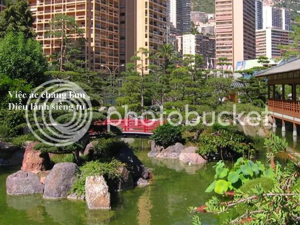 photo Slide10.jpg
