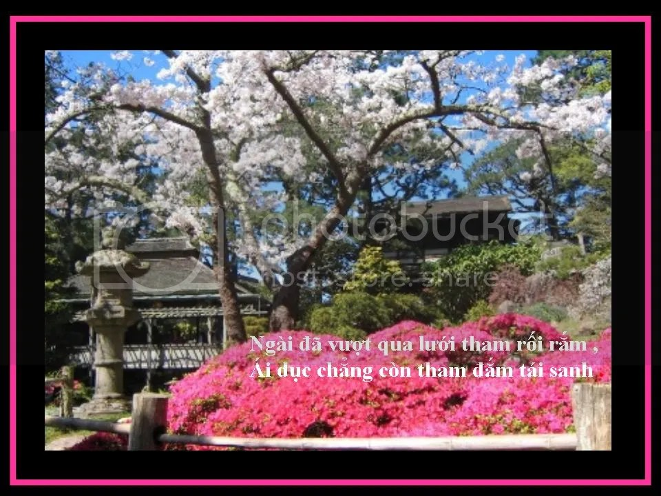 photo Slide4.jpg