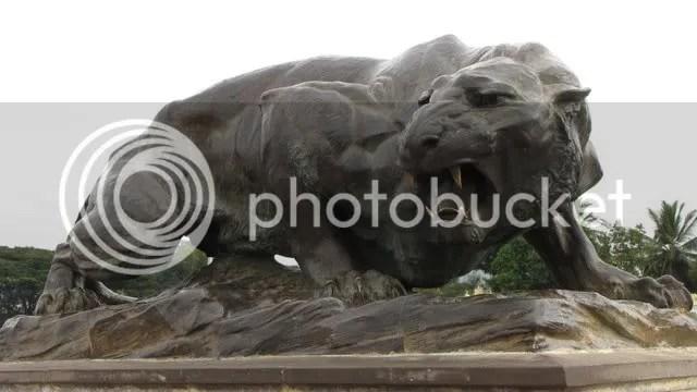 mys lion 291210