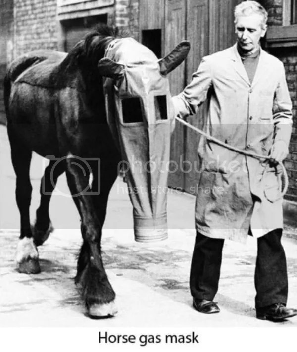 a black and white picture of a horse wearing a huge gask mask