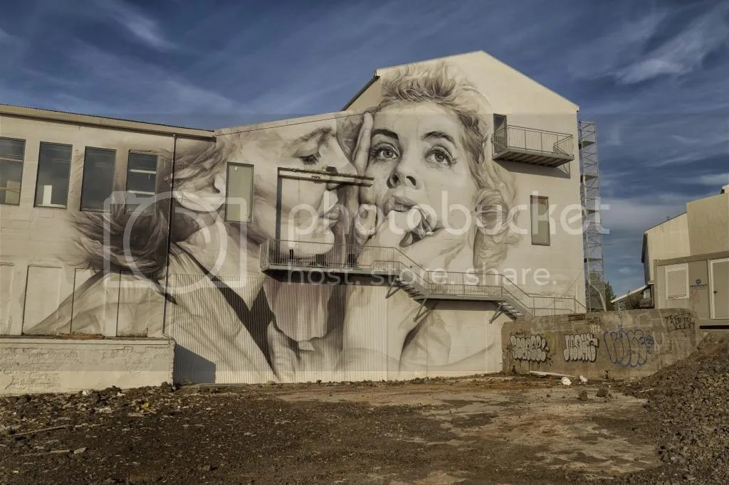 Guido Van Helten's Graffiti