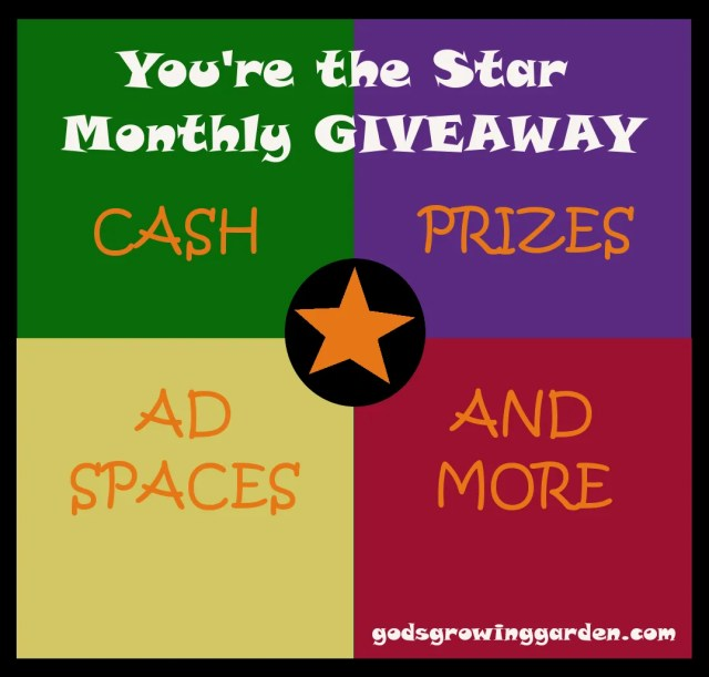 by Angie Ouellette-Tower for http://www.godsgrowinggarden.com/ photo YoureTheStarGiveaway_zpsfzq3wd2h.jpg