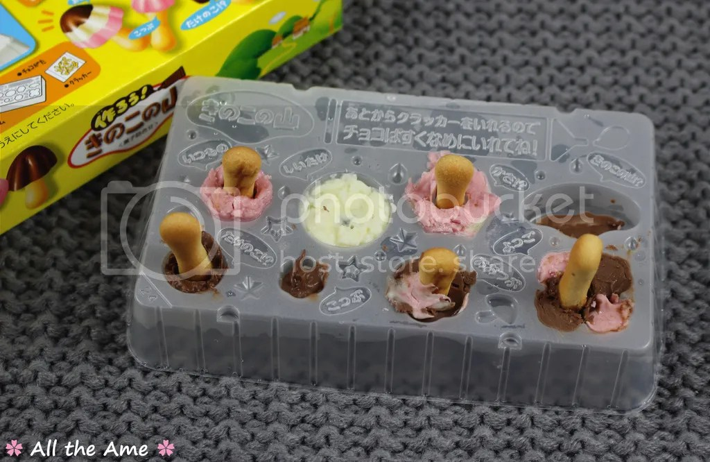 photo Meiji Mushroom Mountain DIY Kit Progress_zpsmyou3rzk.jpg