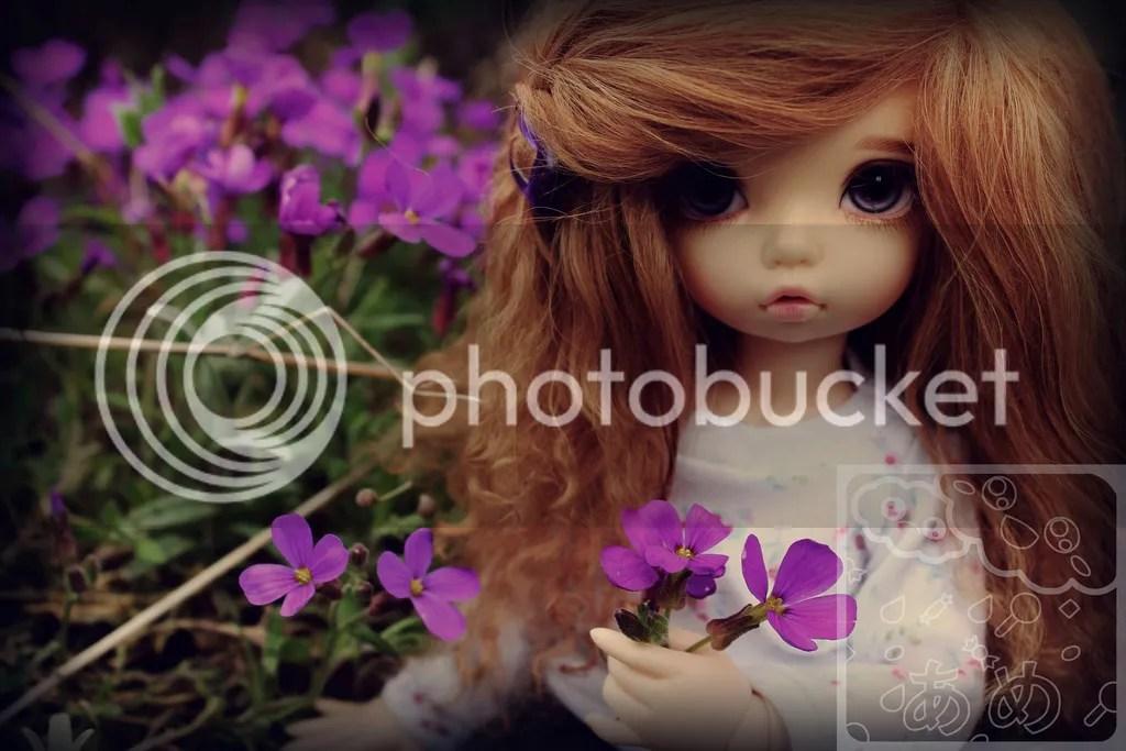 photo IMG_0390--wm_zpsogquvn5g.jpg