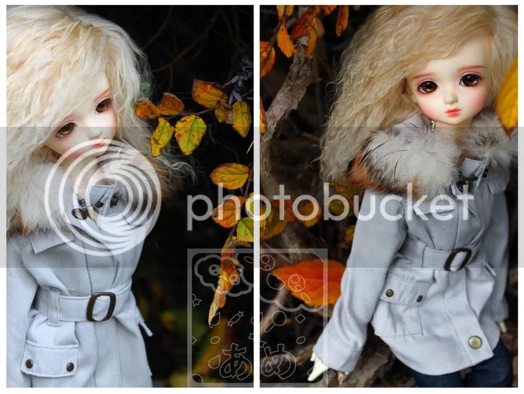 photo autumn-wm_zps8kma61n3.jpg