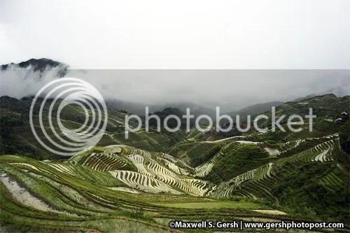 longsheng digital www.gershphoto.com