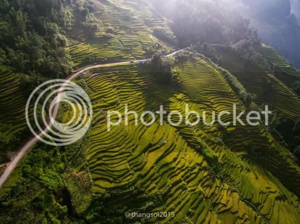 Ruộng bậc thang Y Tí (Lào Cai)