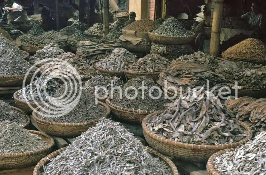 Hà Nội-Altstadt: Khô cá