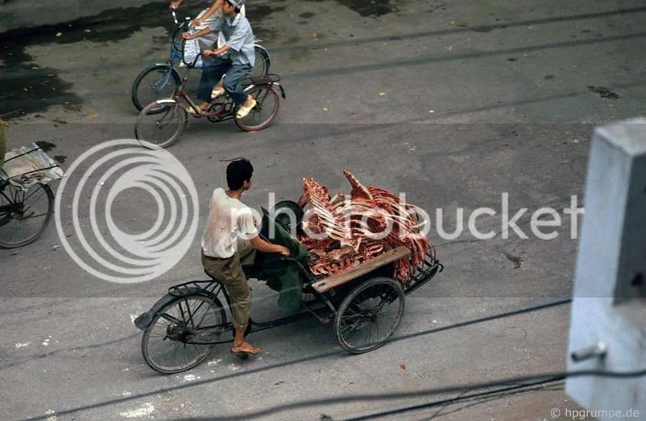 Hà Nội: Giao thông Cyclo-xương