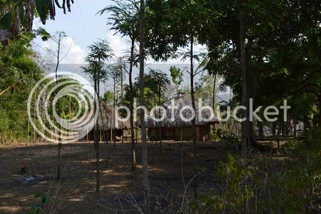 photo Timor01_zpsa9e6fc55.jpg
