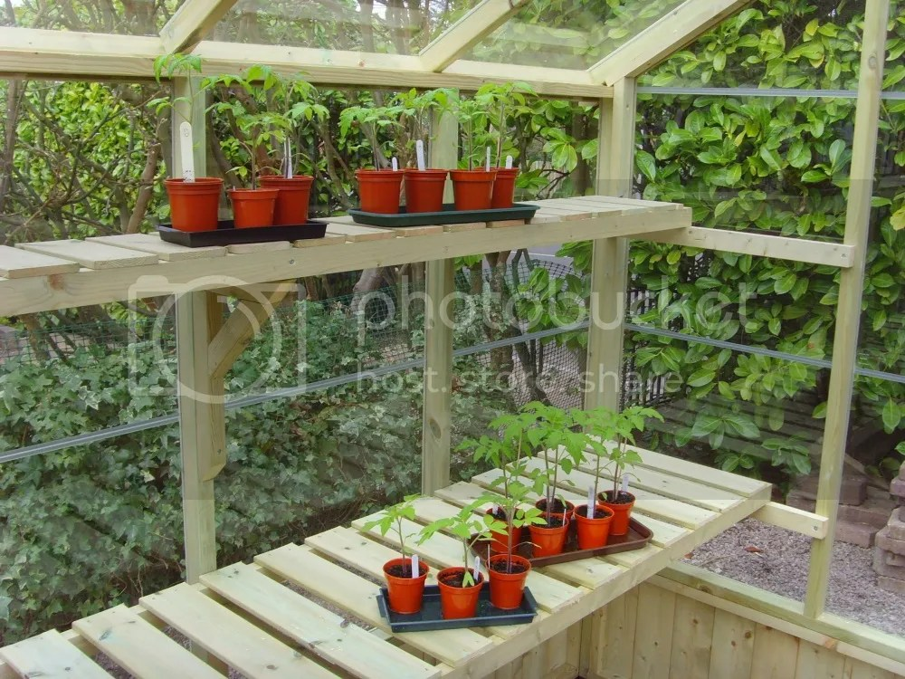 swallow high level greenhouse shelf