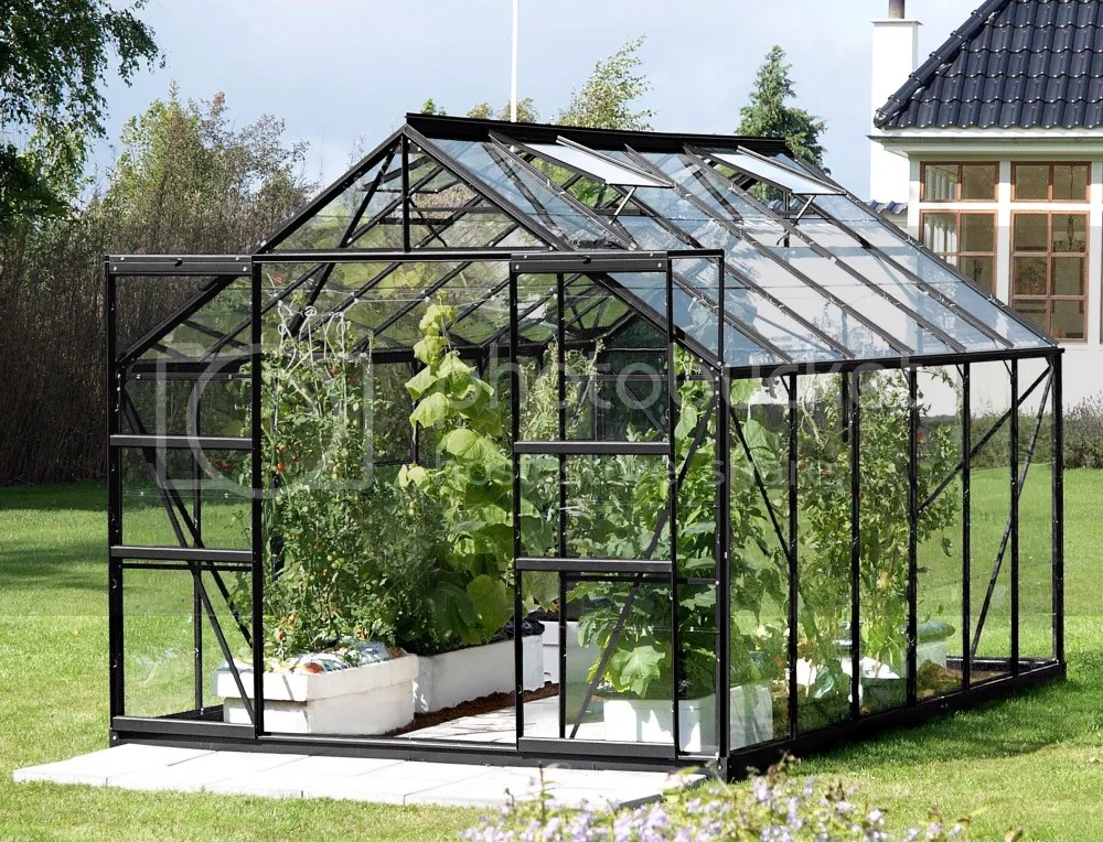 Vitavia jupiter 8x12 greenhouse
