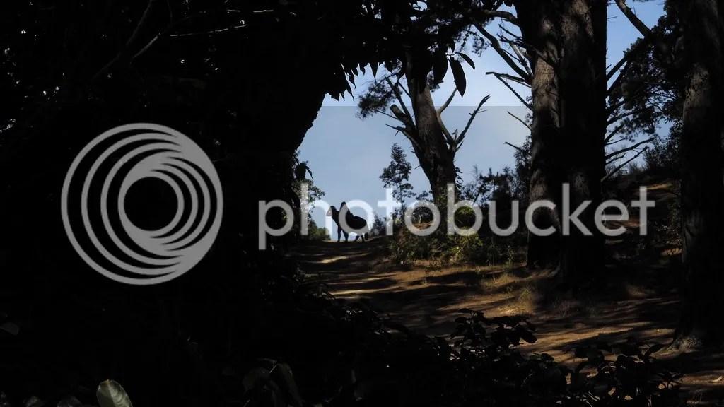photo Black_Rider_2_zps7r2gatdm.jpg