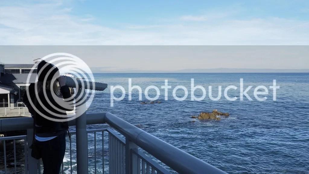 photo Monterey_Bay_Aquarium_2_zpsroffzch4.jpg