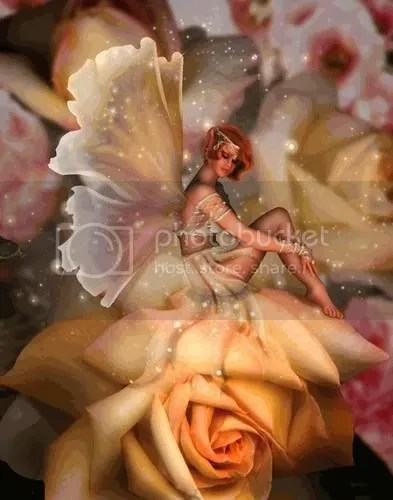Rose Garden Fairy Pictures, Images and Photos