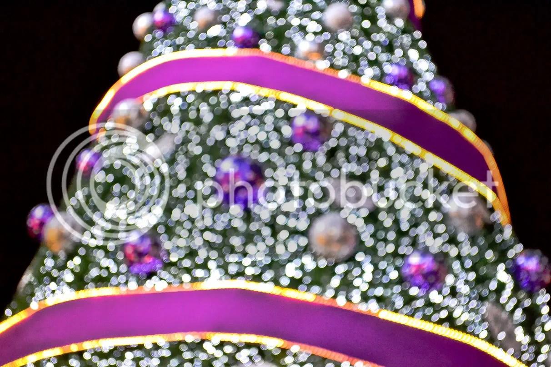 Orchard Road Christmas Lights