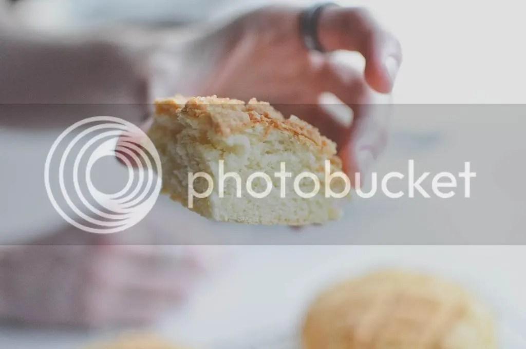 Melonpan Crumb Shot
