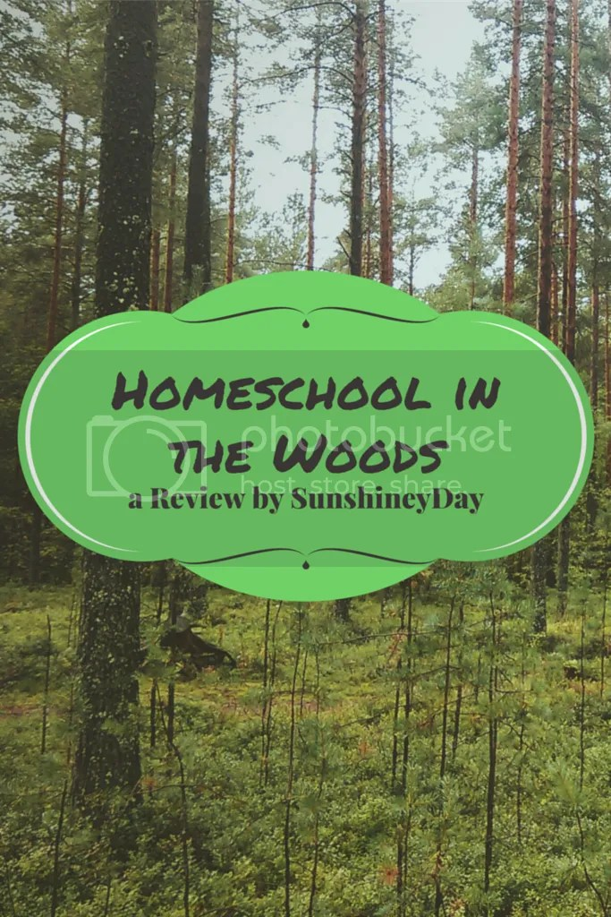Home School in the Woods - SunshineyDay