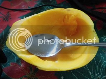 photo HPIM1822_zps4b7da6f9.jpg