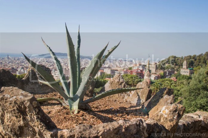 park guell cityscape