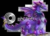 Amethyst Dragon Information