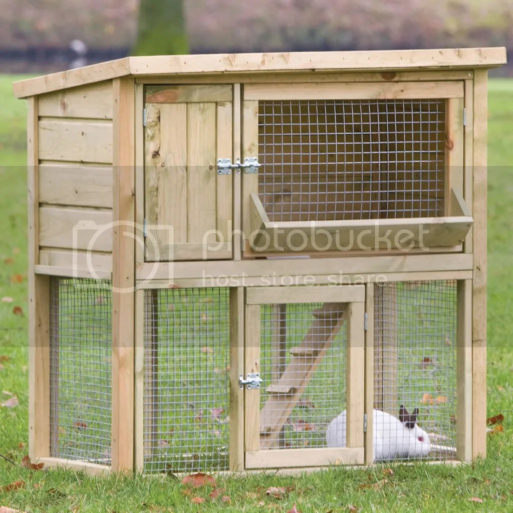 Rabbit hutches tips your number 1 source for finding for What is a rabbit hutch