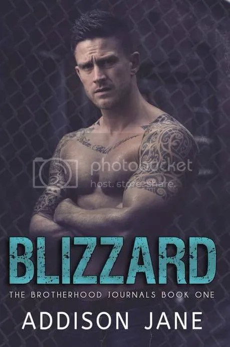 photo Blizzard-ebook_zpsemast2rw.jpg