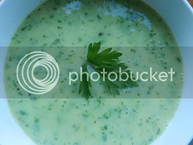Potato and leek soup photo DSCN0947_zpsd108bd9f.jpg