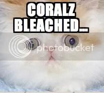 coralz