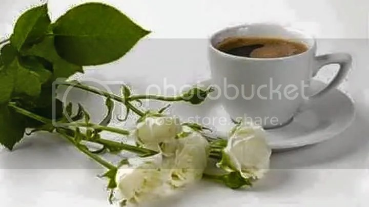 photo 11075164_804553246289580_1728986354038745726_n.jpg