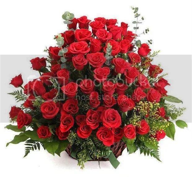 photo 12004812_1659596847615005_6106557986616728206_n 1.jpg