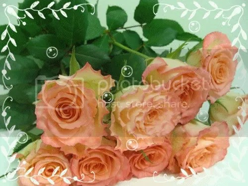 photo 112936463_604346_14136593.jpg