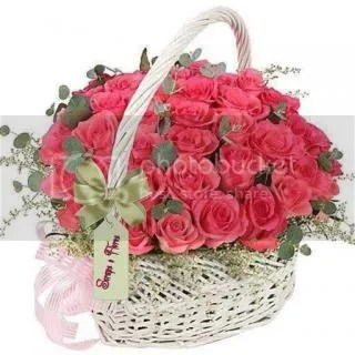 photo 983689_646438912036751_1148887860_n.jpg