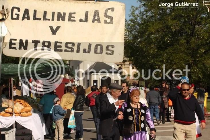 """""""San Isidro Madrid Gallinejas Entresijos Pradera"""""""