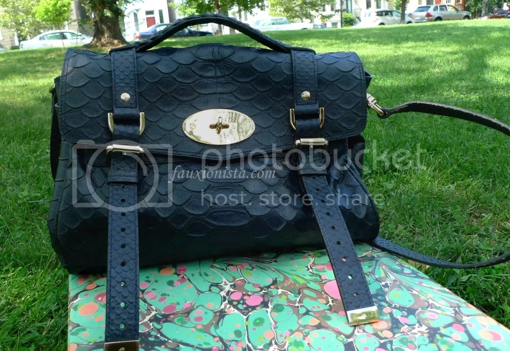 Mulberry Alexa Silky Snake Nightshade in the shade