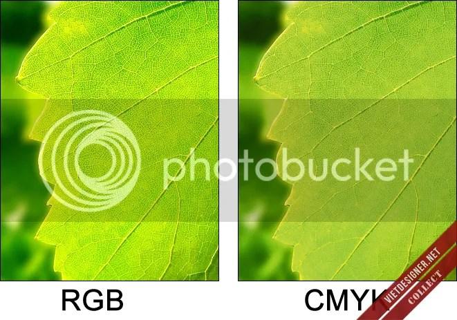 Kiến thức màu sắc, color setting, thiết lập màu photoshop, tutorial, lý thuyết, màu sắc