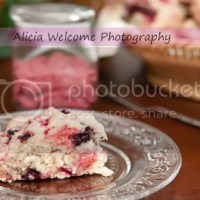 Day 22 : Three Berry Scones (Weight Watchers) & Raspberry Butter