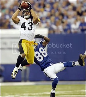 Troy_Polamalu_Icon.jpg image by revmyspace