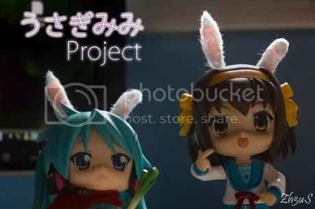 Rabbit Ears Project!