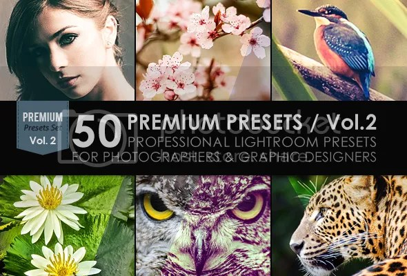 50 Premium Lightroom Presets / Vol.1 - 1