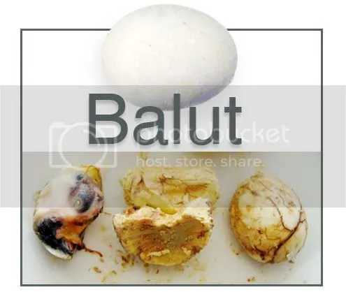 http://www.experienceproject.com/stories/Wtk-Did-You-Ever-Eat-A-Balut/2390649