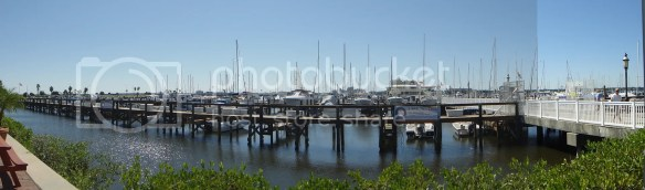 boat marina Pictures, Images and Photos