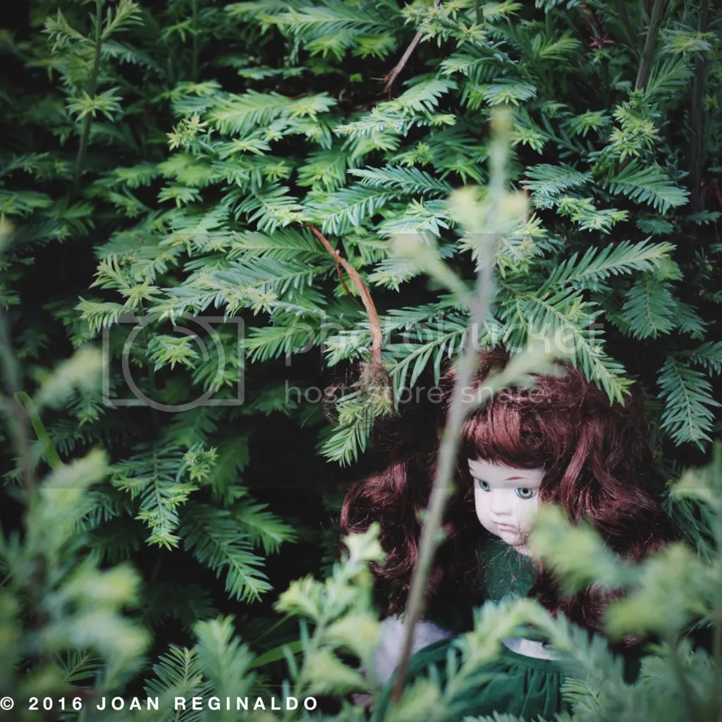 photo Creepy Brunette Doll in Bush_zpsg6ibxffv.png
