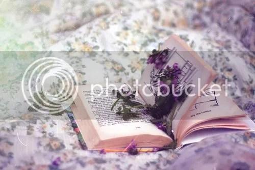 photo 66896_470178026364603_474563643_n.jpg