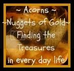 Acorns Nuggets of Gold Blog