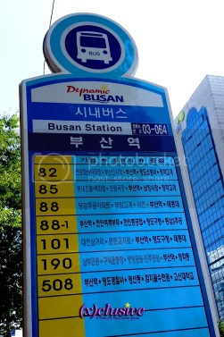 photo Busan23_zpsiryi8dxd.jpg