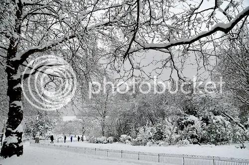 photo winter.jpg