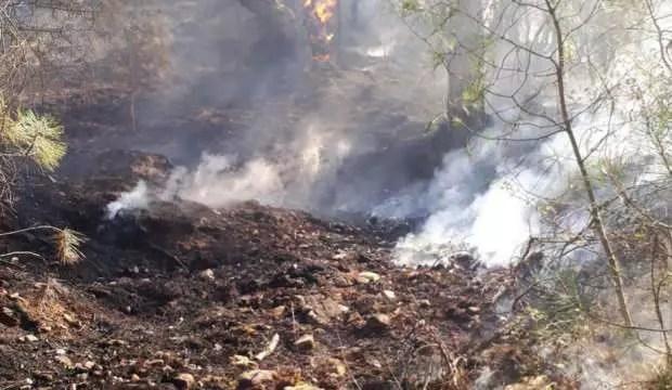 Kavaklıdere'de tıpkı gün 4 orman yangın 1